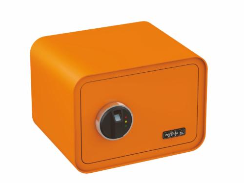 BASI-350-Fingerprint-2018-0002-O-Tresor_mini_Finger_orange